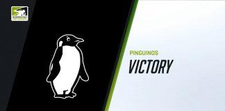 Pinguinos - contenders